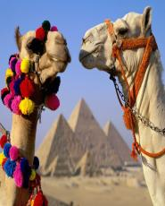 2 Days Cairo and Luxor from Hurghada by flight