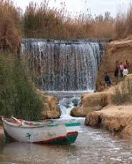 Day Tour to Fayoum Oasis
