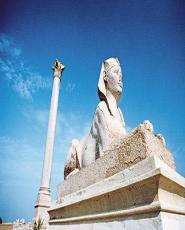 Day Tour to Alamein & Alexandria