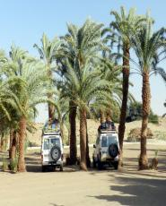 Safari in Kharga and Dakhla Oases from Luxor