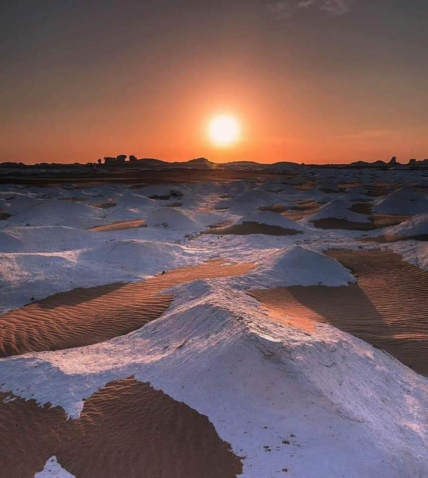 Siwa , Bahariya & White desert