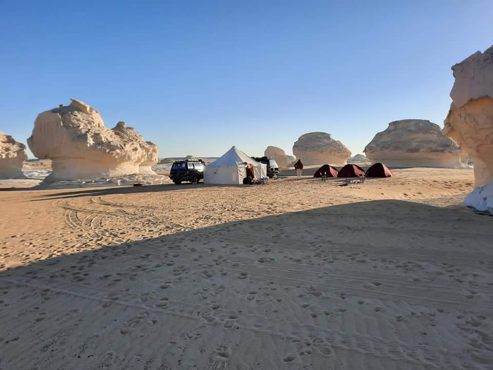 Whales Valley & White Desert