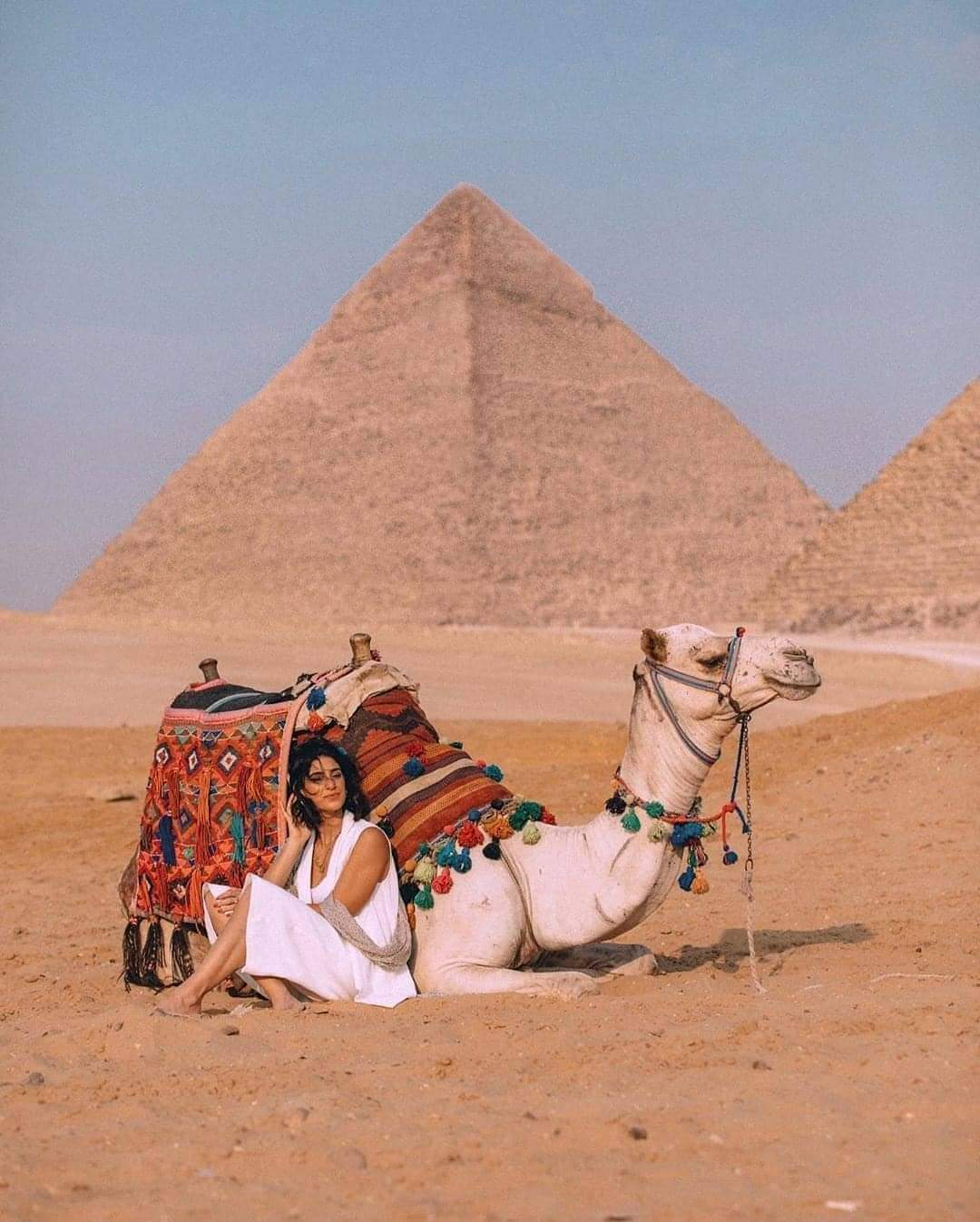 Cairo Day Tour Cairo from Sharm by Air