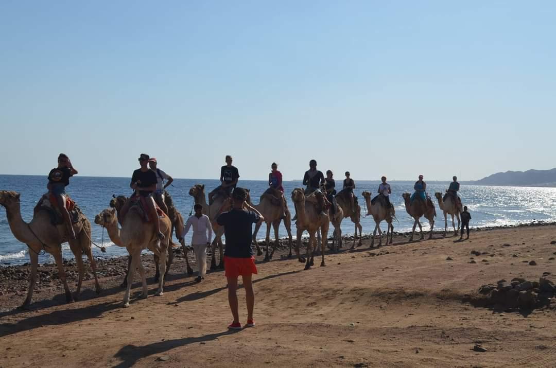 Quad Biking & Camel Riding in Sharm El Sheikh