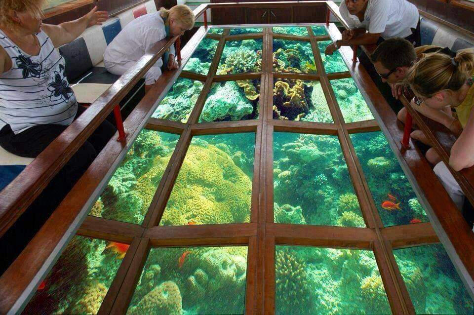 Glass Bottom Boat in Sharm el Sheikh